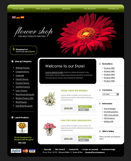 NetSuite Ecommerce Template 0022557b